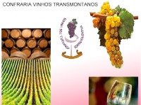 Confraria Dos Vinhos Trasmontanos, Programaçao