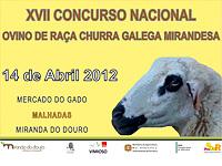 XVII Concurso Nacional de Raza Churra con ovejas Galega Mirandesa