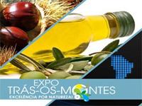 Actividades Expo Trás-os-Montes